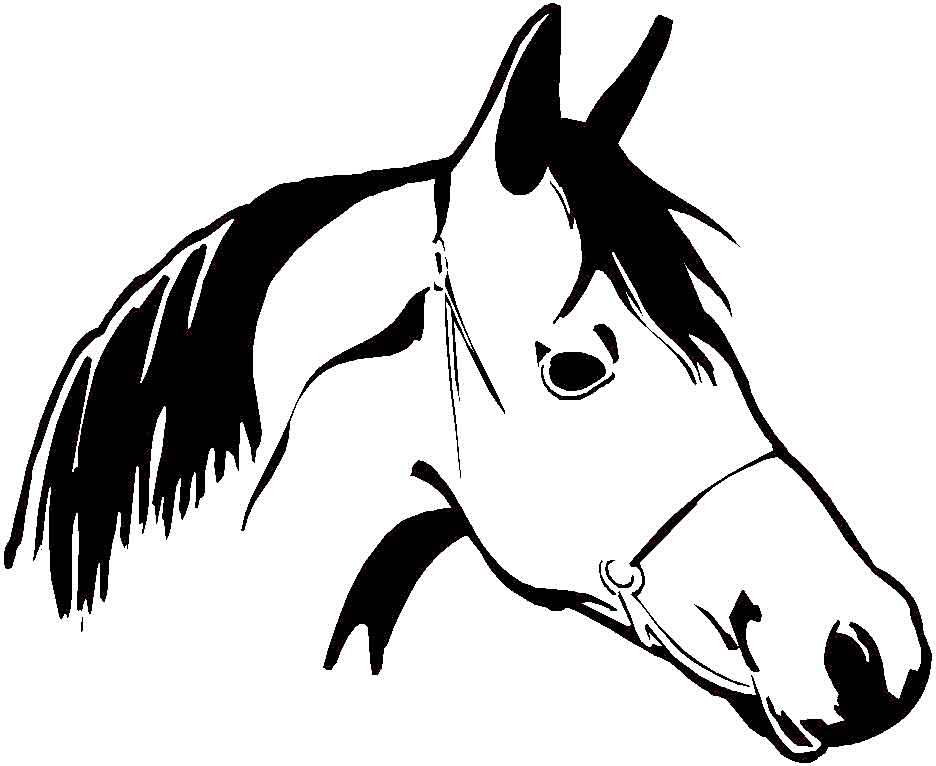 Coloriage de cheveaux la thironniere - Dessin tete de cheval a imprimer ...